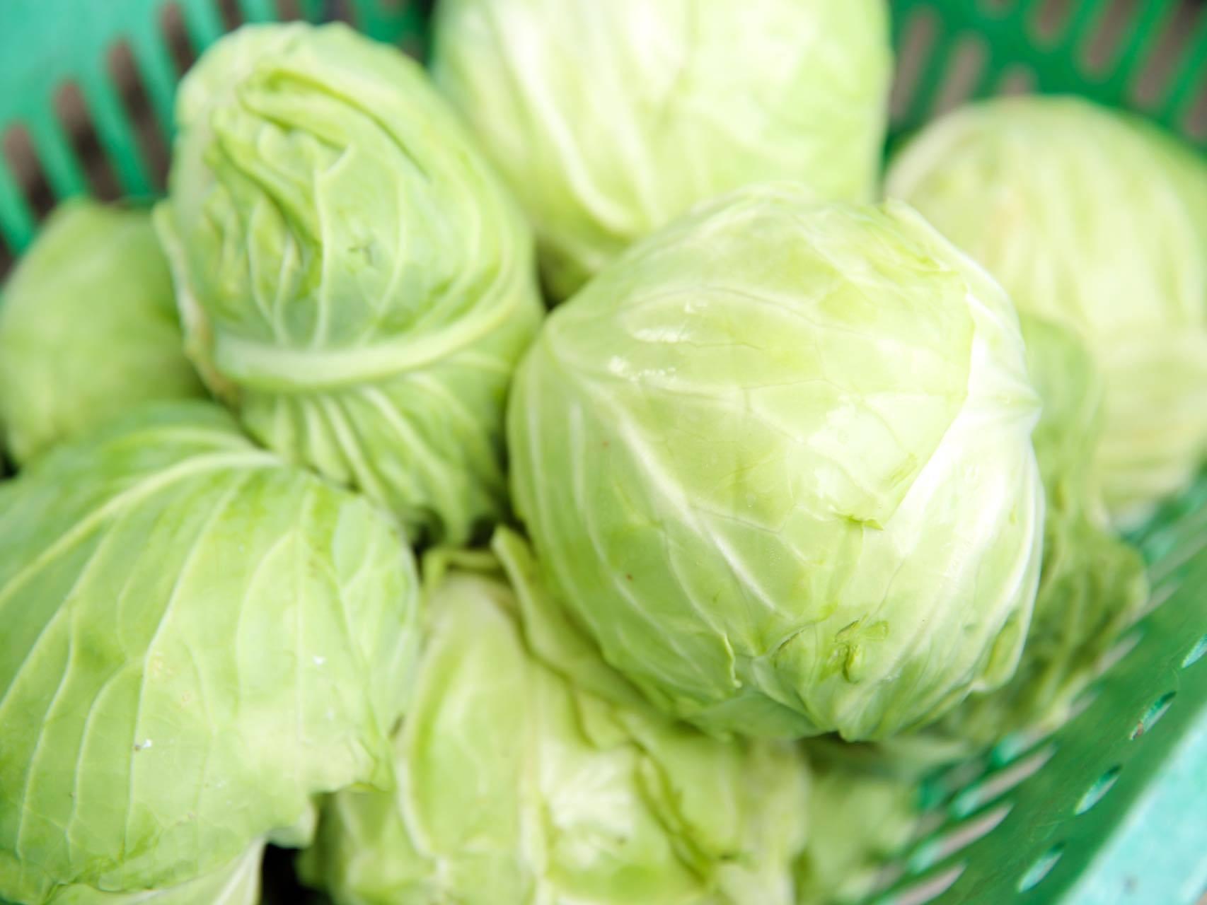 マネージャーAzy自家製の新鮮な夏野菜を召し上がって頂けます♪
